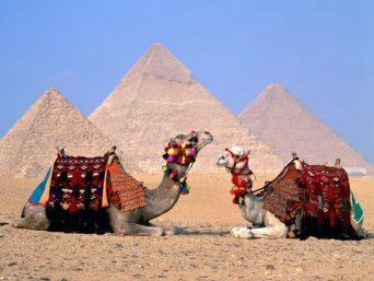 take-a-camel-ride-to-the-pyramids-of-giza-egypt-3