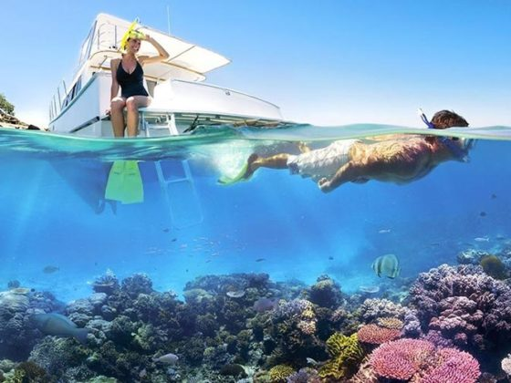 snorkelling-on-tiran-island-1