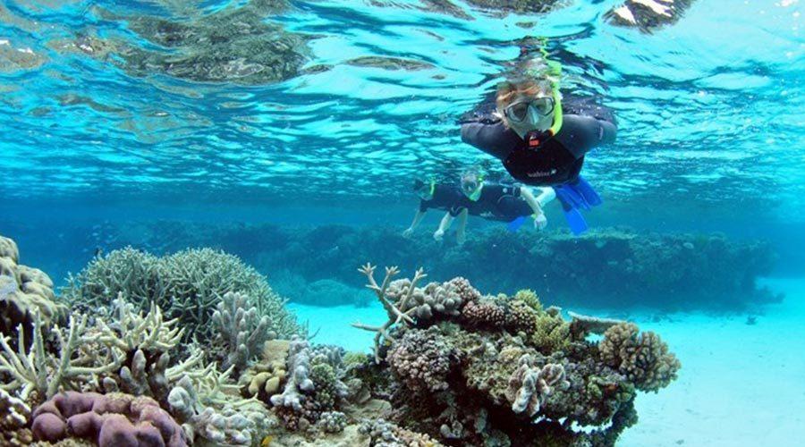 snorkelling-on-tiran-island