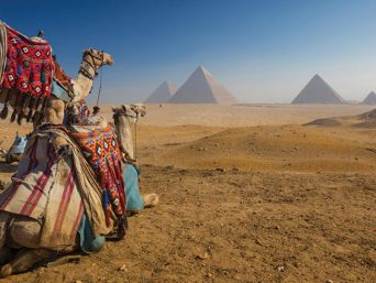 giza-pyramids-memphissakkara-lunch-and-camel-ride-between-pyramidscover