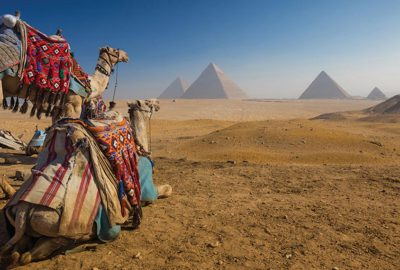 giza-pyramids-memphissakkara-lunch-and-camel-ride-between-pyramidscover